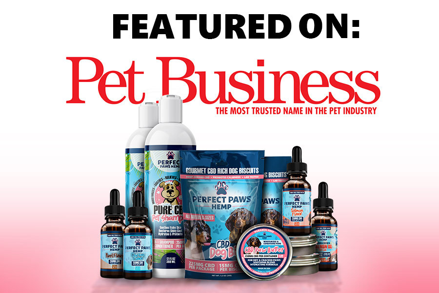 Global Widget Pet Business Featured Image